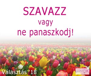nonapi_valasztas1