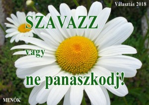 nonapi_valasztas2