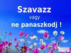 nonapi_valasztas3